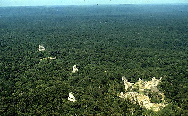Stela 29 Tikal