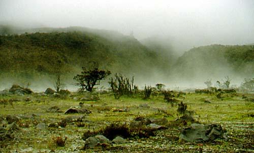Les fabriques d'eau des Andes en péril