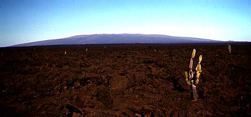 Term paper on volcanoes